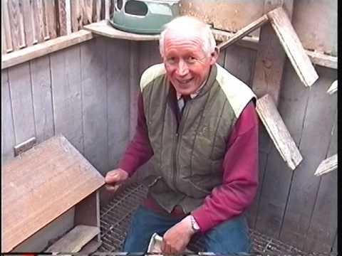 Video 241: Bobby Carruthers of Bonnyrigg: Premier Pigeon Racer