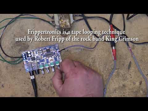Digital Echo module demo