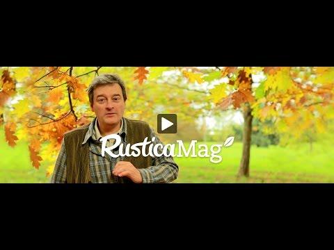 rusticamag-13-:-mon-programme-de-tailles-d'automne