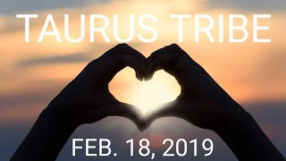 ☀️TAURUS, 🔥⚡NEW OPPORTUNITY & TOWER TRANSFORMATION! FEB. 18, 2019 DAILY READ!