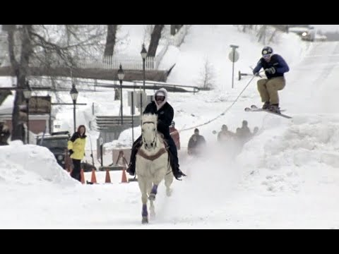 Crazy Winter Sport: Skijoring  |  Season Pass