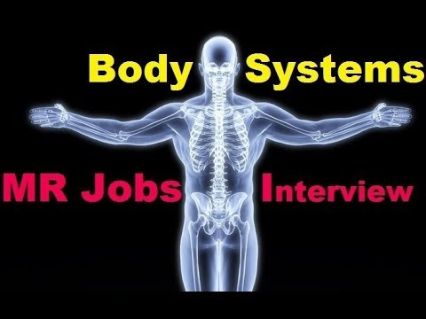 MR Interview (Body Systems) jobs