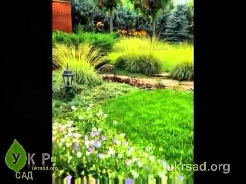 Услуги ландшафтного дизайна: готовый проект сада