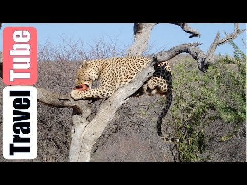 Highlights Namibië Botswana