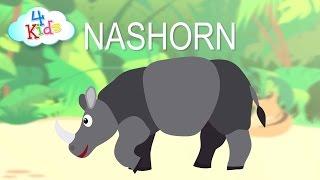 Tiergeräusche Tierlaute und Tiernamen für Kleinkinder  Wildtiere (vorgesprochen)