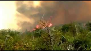 Brigadistas Corriendo del fuego -incendio Cholila
