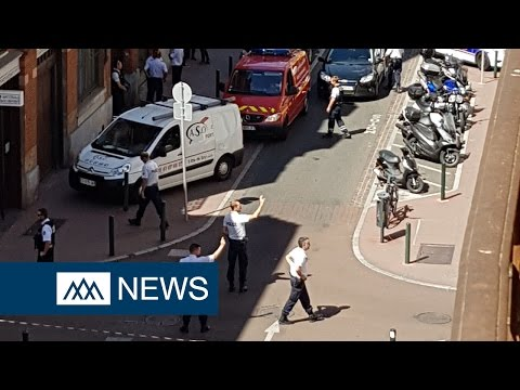 Female police officer stabbed in police station in Toulouse,
