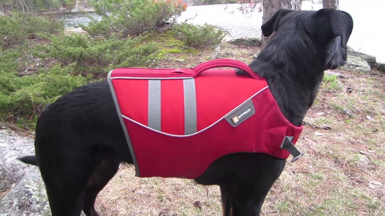How To Make A Dog Life Vest