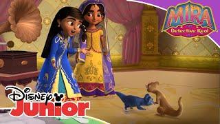 Mira Detective Real: El concurso de baile   Disney Junior Oficial