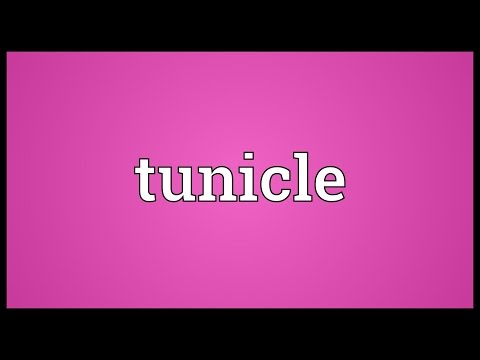 Header of tunicle