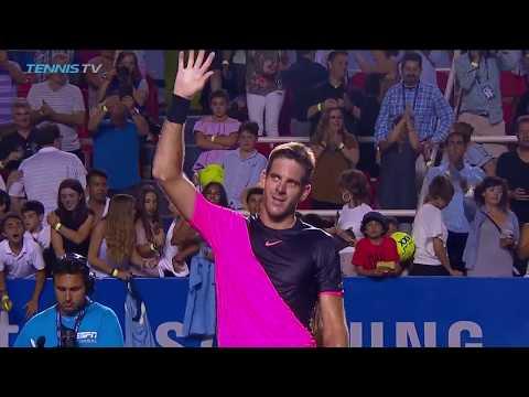 Juan Martin del Potro vs David Ferrer: Best Shots & Highlights   Acapulco 2018