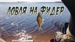 Ловля на фидер. Видео отчет река Суда.(Ловля на фидер. В этот раз рыбалка получилась сложная, но более интересная. Ловля на фидер на реке оказывает..., 2015-06-10T04:35:41.000Z)