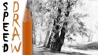 "How To Draw Trees Iii (zoom And Details) - Speed Drawing 12 ""lime Trees"" - Michał Orłowski"