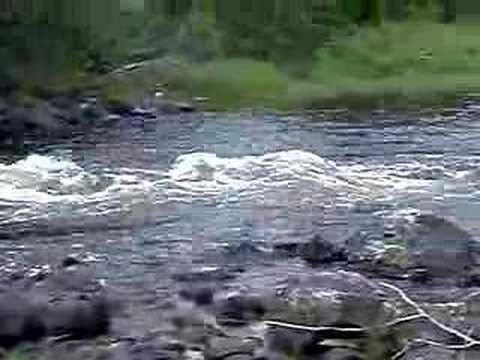 Missinaibi River - Wavy Rapids
