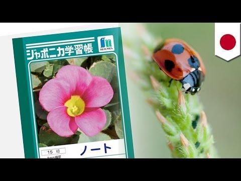 「ジャポニカ学習帳」から昆虫が消えた仰天理由
