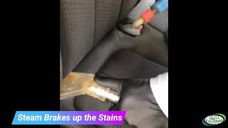 Steam Cleaning Seats to Remove Stains | Fresh Eco Steam Cleaning