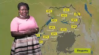 Embeera y'obudde nga 21 01 2019 ne Agnes Nalukwago