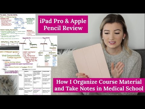 How I Organize My Study Notes/Course Material in Medical School | iPad & Apple Pencil Review