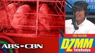 Gov't offers interest-free loans to hog raisers hit by African swine fever | DZMM