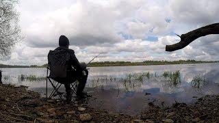 Рыбалка на реке Волхов | Ловля на поплавочную удочку