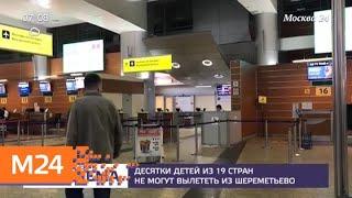 Десятки детей из 19 стран не могут вылететь из Шереметьева - Москва 24