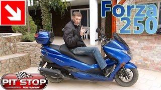 Honda Forza 250 2010 р. в. Моя думка
