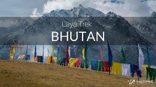 Bhutan Trek to Laya   Adventure Travel Vlog in the Himalayas - 4k