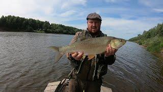 Рыбалка на Вятке сплавом Продолжение Жерех на спиннинг