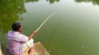 Best Fishing Video By Professional Angler | Video câu cá hay nhất (Part-06)