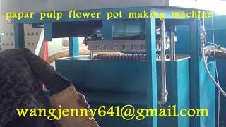 paper pulp seeds cup flower pot making machine-whatsapp:0086-15153504975