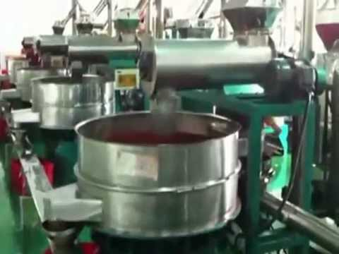 Chili powder automatic production line/fully automatic ...