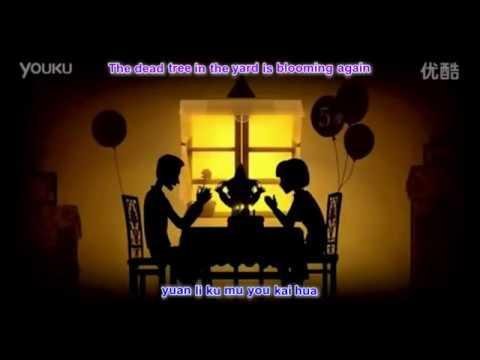 Wang Zheng Liang 王铮亮 - Shi Jian Dou Qu Nar Le 时间都去哪儿了 with pinyin lyrics and english translation