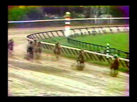 1979 Travers Stakes - General Assembly : CBS Broadcast