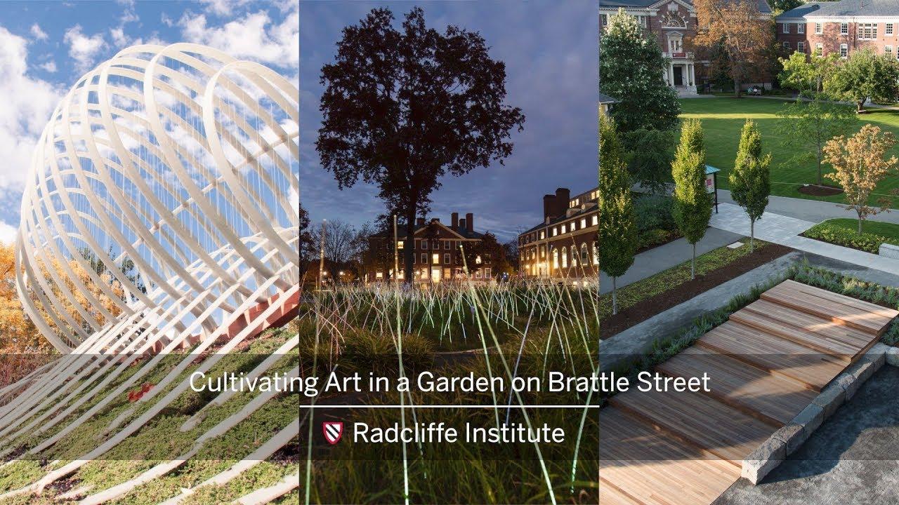Cultivating Art in a Garden on Brattle Street || Radcliffe Institute