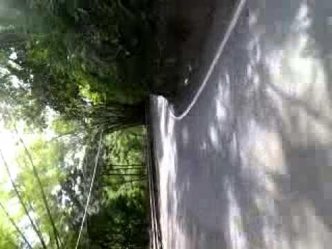 Longboard downhill Comerio, Puerto Rico