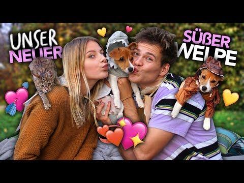 2 GESCHWISTER KLEIDEN IHREN WELPEN EIN Mit Babykatze | Joey's Jungle