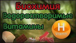 Биохимия. Лекция 19. Водорастворимые витамины. Витамин H. Биотин.