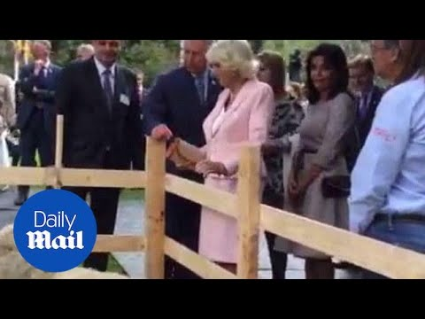 Prince Charles and Camilla visit an organic fair in Bogota - Daily Mail