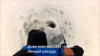 2 января 2014. Зимняя рыбалка. Камское устье, ловля судака и берша.