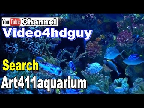Aquarium screensavers 3d and fish fun from youtube free for What sound does a fish make