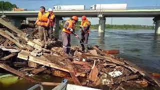 Спасение животных после паводков в Иркутской области
