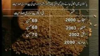 Wheat Production Technology Pakistan part-1 Dr.Ashraf Sahibzada