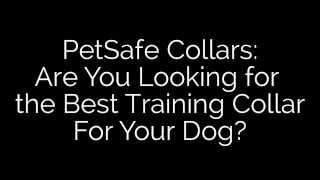 Petsafe Train-ps-pdt0012470 Yard And Park Trainer