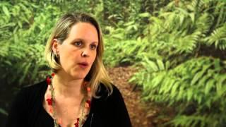 Amy Duchelle on REDD+ safeguards