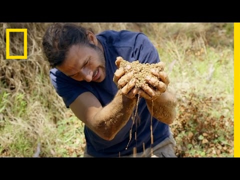 Finding Water in the Desert | Primal Survivor