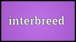 Interbreed Meaning