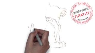 Мультик король лев  Как правильно нарисовать короля льва карандашом поэтапно(Король лев мультфильм. Как правильно нарисовать короля льва онлайн поэтапно. На самом деле легко и просто..., 2014-09-18T16:02:40.000Z)