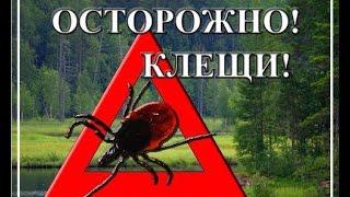 Ооо ужас!!! Нас атаковали клещи!!! Средства защиты от паразитов!!!