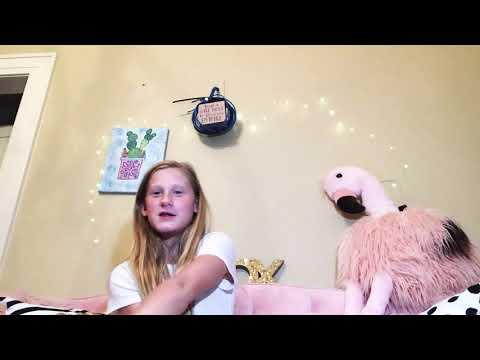 The Flip Description Challenge W/Chloe Potter