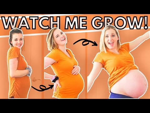WEEK BY WEEK PREGNANCY BELLY PROGRESSION | Every Week of My Pregnant Belly!